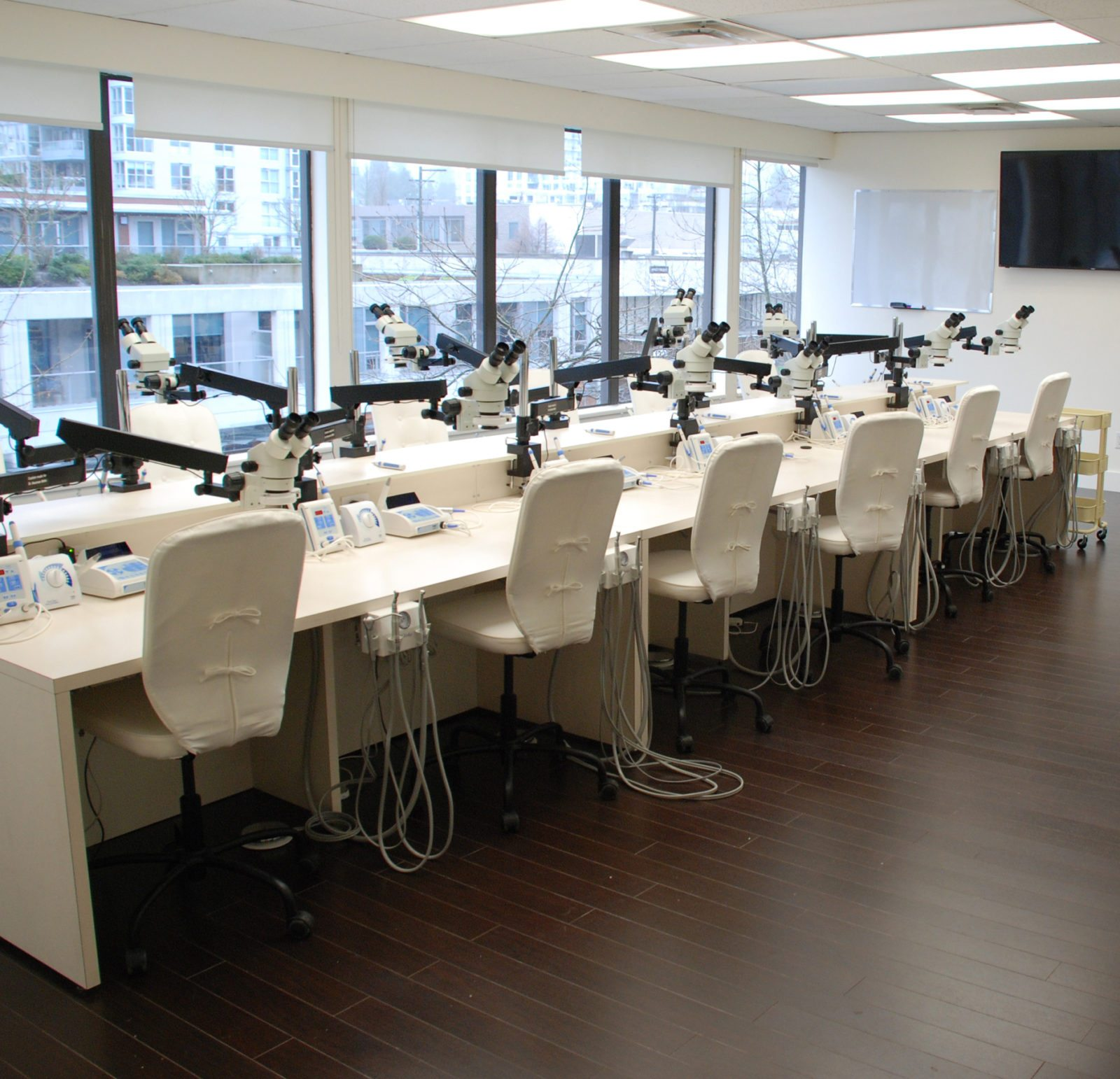 Pacific Endodontics Hands-On Vancouver